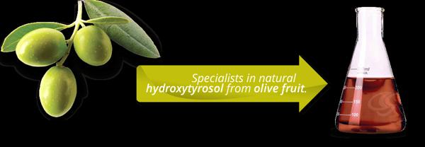 hydroxytyrosol-la-gi