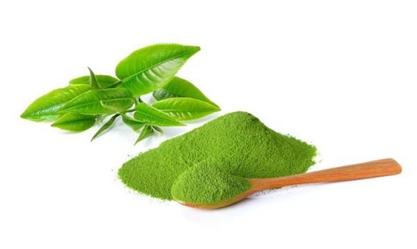 Instant-green-tea-powder