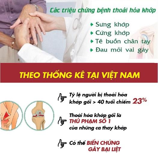 ty-le-thoai-hoa-khop-o-Viet-Nam