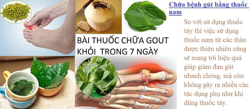chua-benh-gut-bang-thuoc-nam