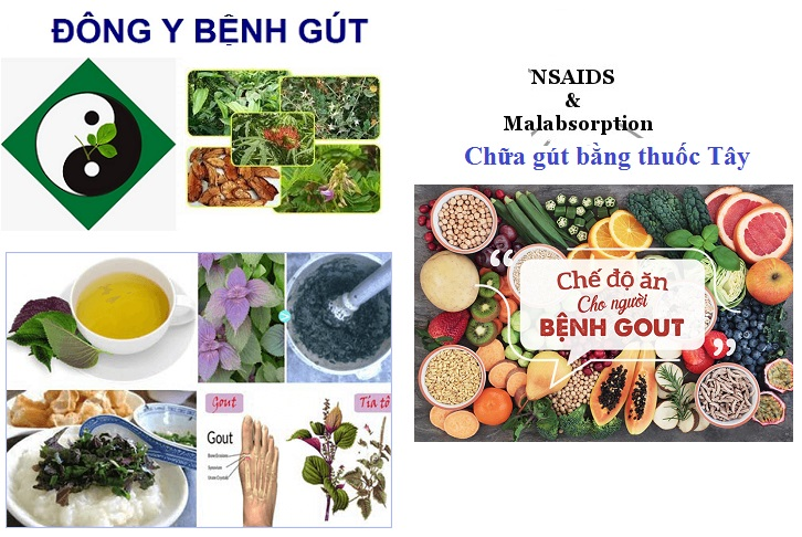 vien-uong-Degout-Max